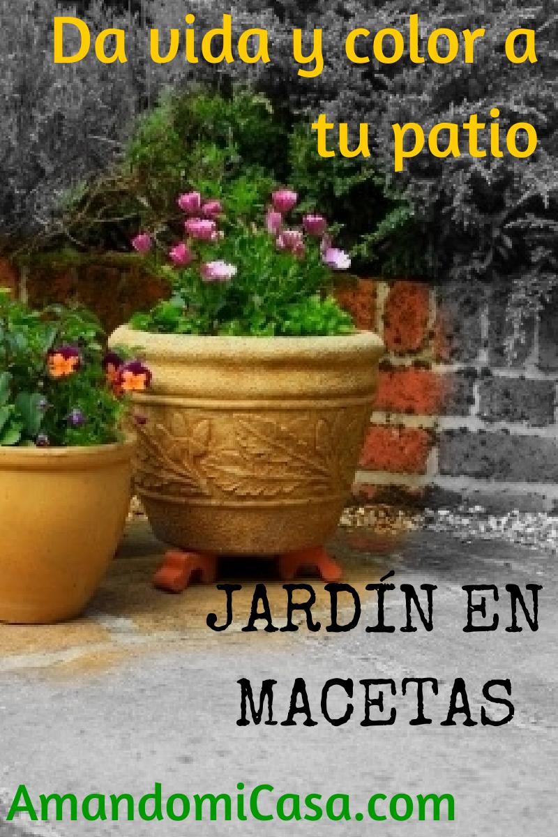 Jard n en macetas - Jardines en macetas ...