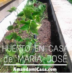 Huerto en casa María José
