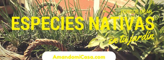 usar especies nativas en tu jardín