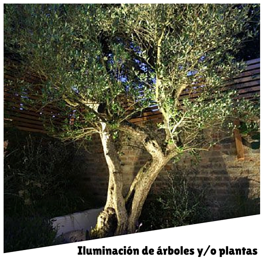 Ilumina tu jard n for Iluminacion arboles jardin